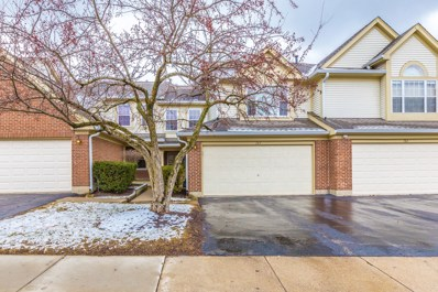 163 STIRLING Lane, Schaumburg, IL 60194 - MLS#: 09878540