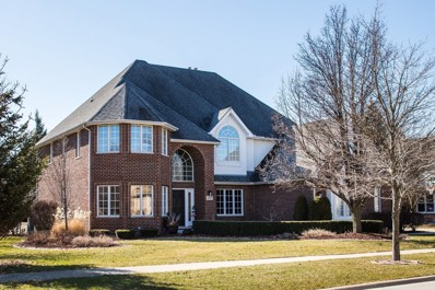 12521 Lake View Drive, Orland Park, IL 60467 - MLS#: 09879266