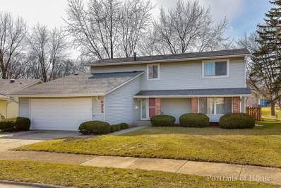 6954 Blue Flag Avenue, Woodridge, IL 60517 - MLS#: 09880357