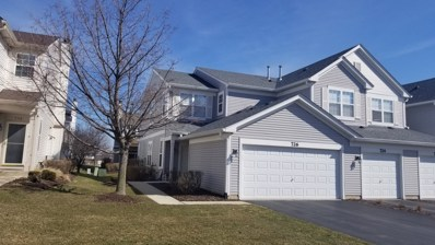 726 Woodewind Drive UNIT 5, Naperville, IL 60563 - MLS#: 09880506