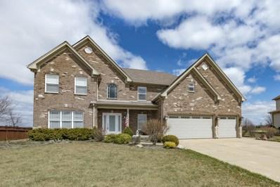 26838 Basswood Circle, Plainfield, IL 60585 - MLS#: 09880549
