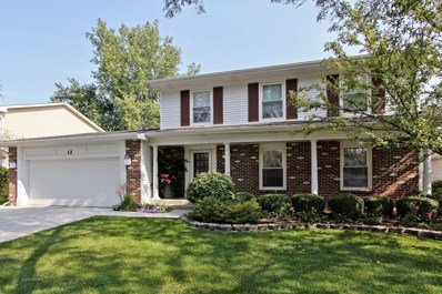 12 Somerset Lane, Buffalo Grove, IL 60089 - MLS#: 09880886