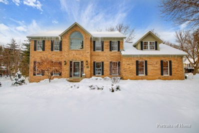 807 E Bailey Road, Naperville, IL 60565 - MLS#: 09881856