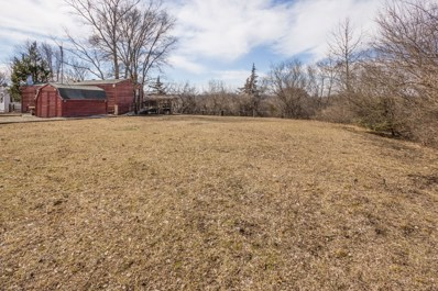 19-20  Hole In The Wall, Wilmington, IL 60481 - MLS#: 09881893