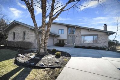 14145 Creek Crossing Drive, Orland Park, IL 60467 - MLS#: 09882304