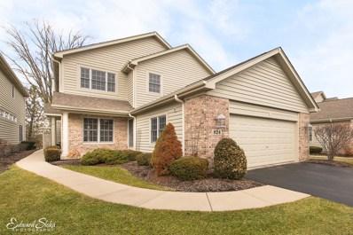 824 Villa Drive, Crystal Lake, IL 60014 - #: 09882784