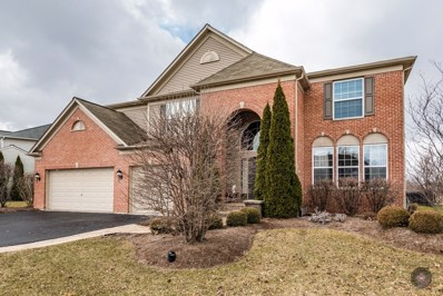 12304 Blue Iris Lane, Plainfield, IL 60585 - MLS#: 09883616
