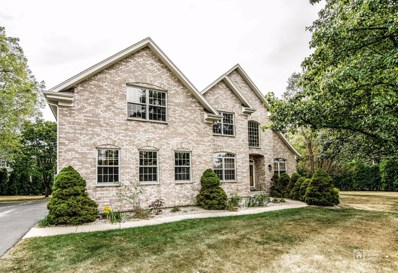 5003 Sunset Court, Palatine, IL 60067 - MLS#: 09885166