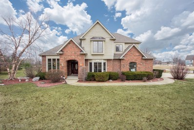 5225 OLD RESERVE Road, Oswego, IL 60543 - MLS#: 09886034