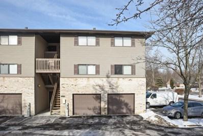 1800 W Highland Avenue UNIT B, Elgin, IL 60123 - #: 09886489