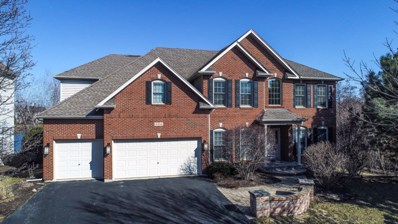 3904 Tall Grass Drive, Naperville, IL 60564 - MLS#: 09887546