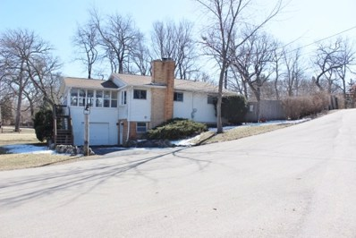 28621 W Valley Road, Ingleside, IL 60041 - MLS#: 09887623