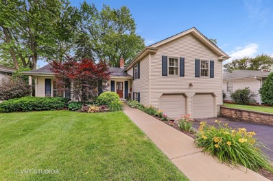 923 Oxford Road, Glen Ellyn, IL 60137 - MLS#: 09888590