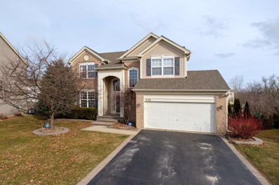 230 Vail Court, Gilberts, IL 60136 - #: 09888602