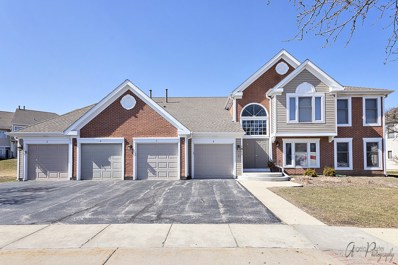 1811 Fox Run Drive UNIT A1, Elk Grove Village, IL 60007 - MLS#: 09888944