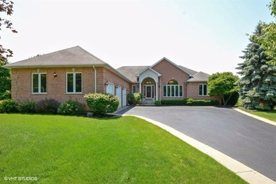 107 Cardinal Court, Island Lake, IL 60042 - #: 09888954