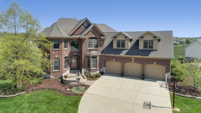 263 Tallgrass Lane, Yorkville, IL 60560 - MLS#: 09889396