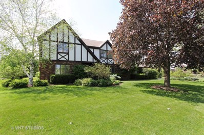 31 Carlisle Road, Hawthorn Woods, IL 60047 - MLS#: 09889598