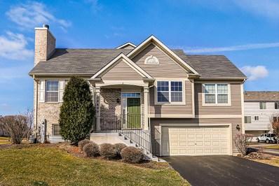 24600 John Adams Drive, Plainfield, IL 60544 - MLS#: 09889618