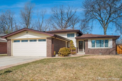 209 Murray Drive, Wood Dale, IL 60191 - MLS#: 09889665