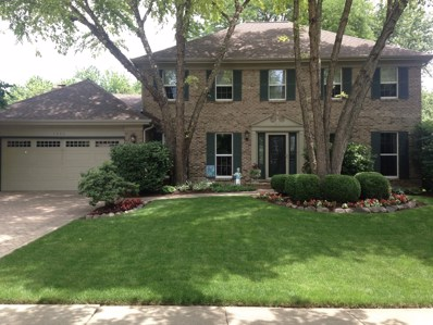 1206 Johnson Drive, Naperville, IL 60540 - MLS#: 09890119
