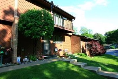 77 MARINER Lane UNIT 0, Fox Lake, IL 60020 - MLS#: 09890365