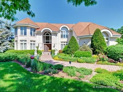91 Livery Court, Oak Brook, IL 60523 - MLS#: 09891714