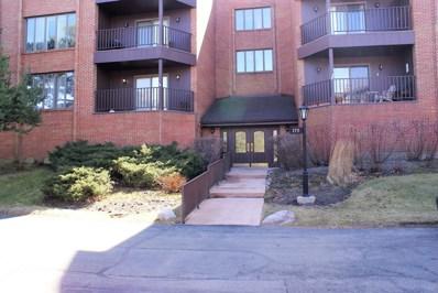 175 Boardwalk Place UNIT 102, Park Ridge, IL 60068 - MLS#: 09891777
