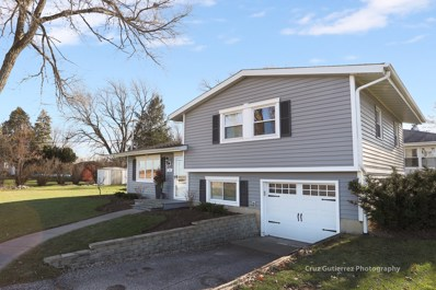 21 Roosevelt Road, Lake In The Hills, IL 60156 - #: 09892112
