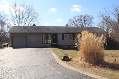 1254 Greenacres Lane, Elgin, IL 60123 - #: 09894101