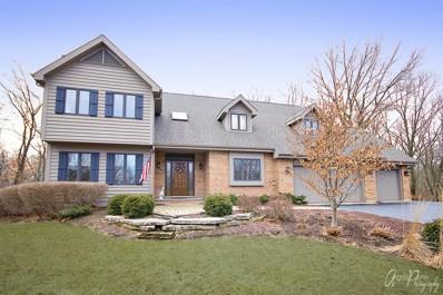816 Woodland Drive, Woodstock, IL 60098 - #: 09894173