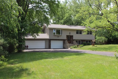2019 E Maple Street, Crete, IL 60417 - #: 09894291