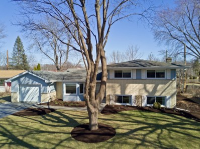 728 Valley Park Drive, Libertyville, IL 60048 - MLS#: 09894880