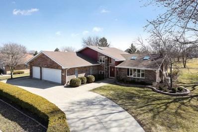 352 Miller Street, Beecher, IL 60401 - MLS#: 09895553