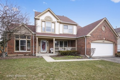 940 Waterford Cut, Crystal Lake, IL 60014 - #: 09895559