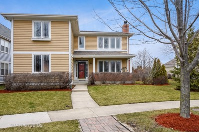 316 Donnelley Place, Vernon Hills, IL 60061 - MLS#: 09896210