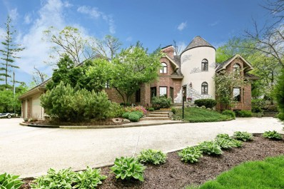 3814 WASHINGTON Street, Oak Brook, IL 60523 - #: 09896490