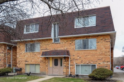 9978 Holly Lane UNIT 1S, Des Plaines, IL 60016 - #: 09896600