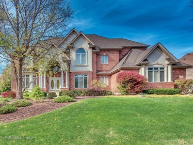 9020 Turnberry Drive, Burr Ridge, IL 60527 - #: 09896621