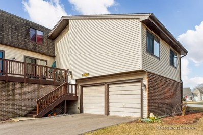 3S407  Chestnut Court UNIT 1, Warrenville, IL 60555 - MLS#: 09897170