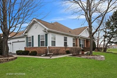 13513 S Butternut Court, Plainfield, IL 60544 - MLS#: 09897338