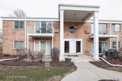 543 Burlington Avenue UNIT 213-E, Downers Grove, IL 60515 - MLS#: 09897606