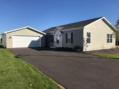 22439 S Remington Drive, Channahon, IL 60410 - #: 09897898