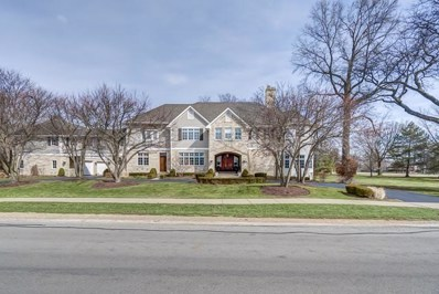 15W030  60th Street, Burr Ridge, IL 60527 - #: 09898301
