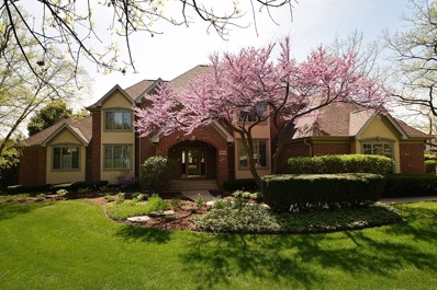 10849 Crystal Springs Lane, Orland Park, IL 60467 - MLS#: 09898569