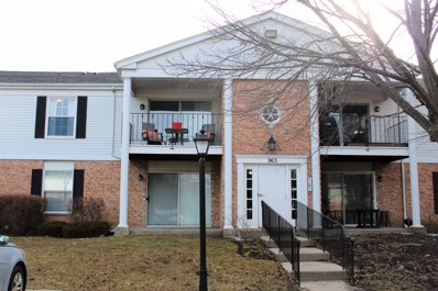 963 Golf Course Road UNIT 5, Crystal Lake, IL 60014 - #: 09899101