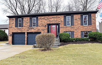 1115 Mensching Road, Roselle, IL 60172 - MLS#: 09899176