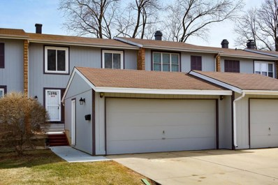285 Birchwood Lane, Bloomingdale, IL 60108 - #: 09899537