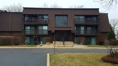 1620 Richmond Circle UNIT 205, Joliet, IL 60435 - MLS#: 09899540