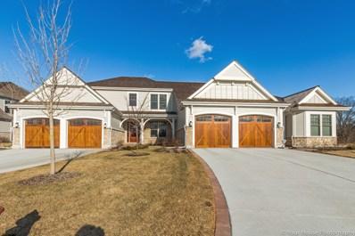 1691 Elderberry Court, Lake Forest, IL 60045 - MLS#: 09899797